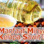 9 Khasiat Minyak Kelapa Sawit Untuk Kesehatan
